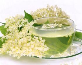 Напитки из соцветий бузины