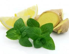 -limonom-и мята для настойки