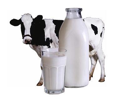 молоко правда и вымысел