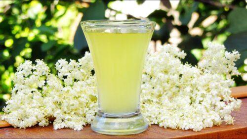 Освежающий лимонад из бузины. Лучший рецепт!