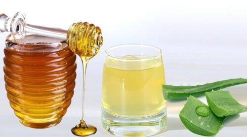 Алоэ - полезные свойства, применение в лечении