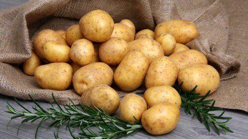 Картофель, патока и кофе помогают снизить вес