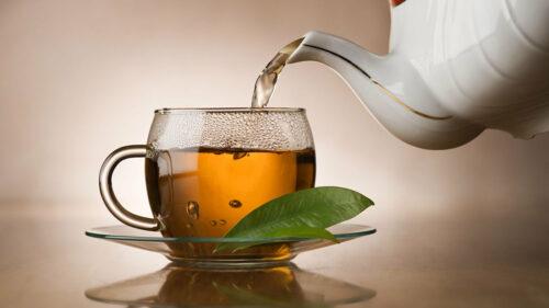 Зеленый чай напиток
