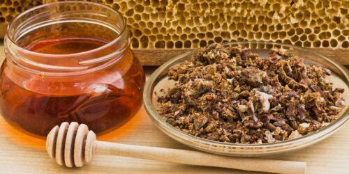 Прополис. Лечебная настойка на пчелином продукте.
