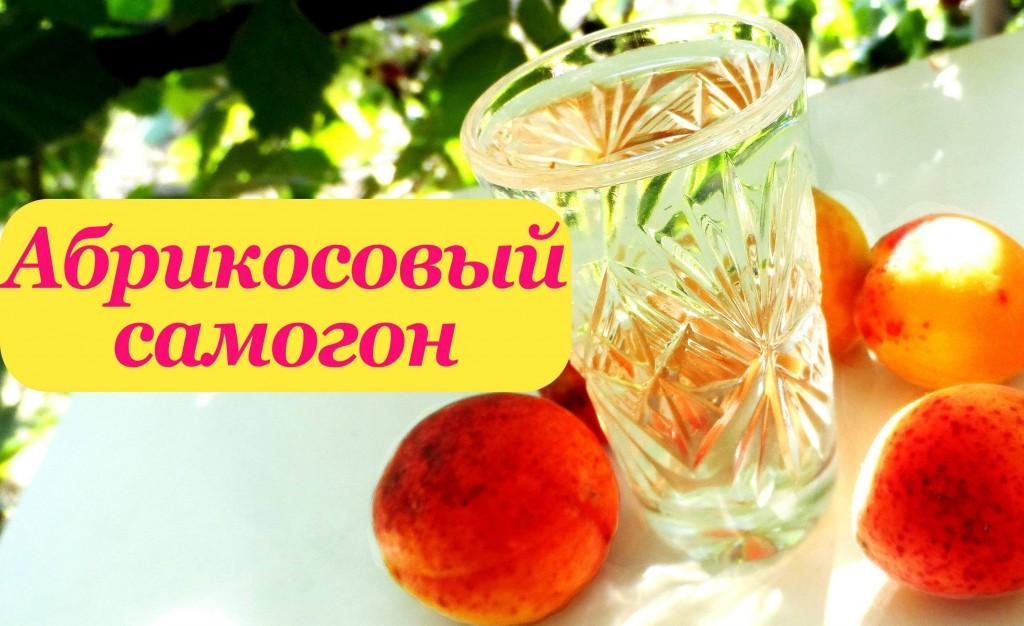 Самогон из абрикос в домашних условиях рецепт