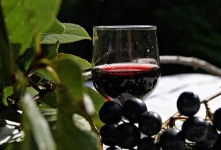 Напиток из аронии