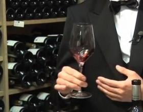 правила выбора вин в магазине
