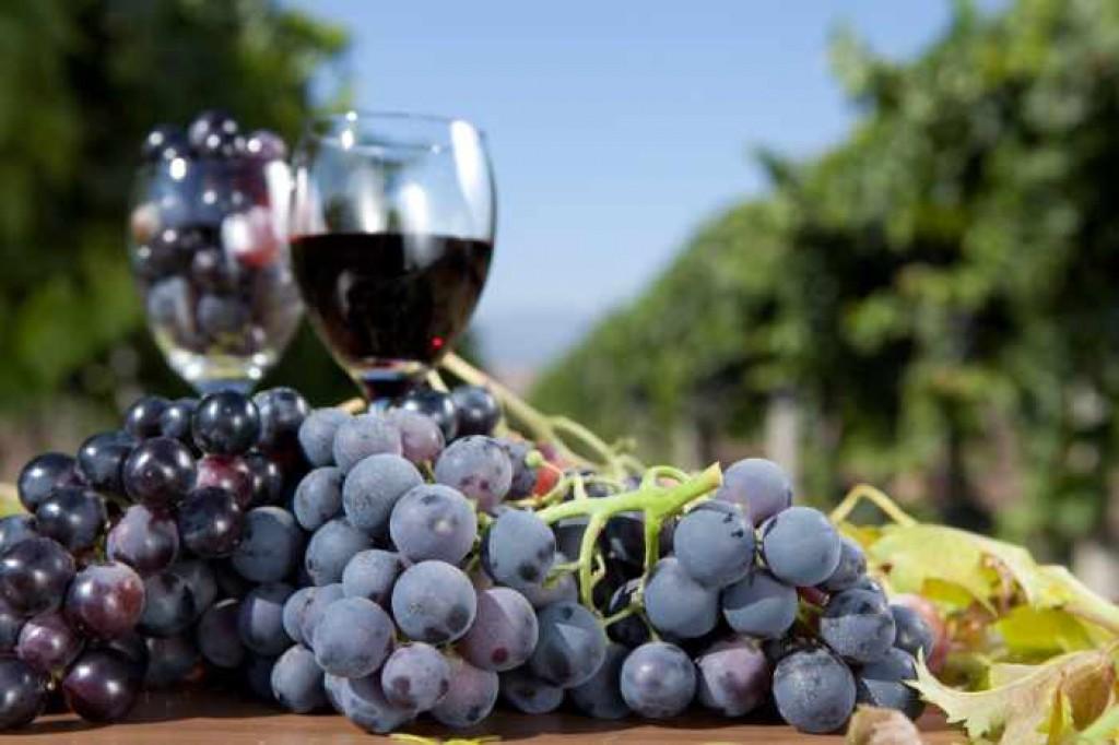 Как сделать наливку из черного винограда