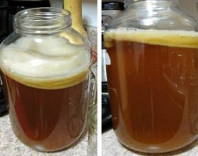 -health-benefits-of-kombucha-immortality-tea-featured