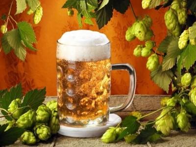 Домашнее_пиво_своими_руками