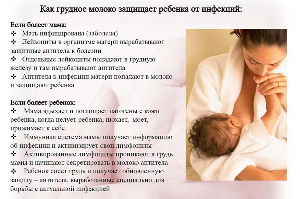 Грудное вскармливание новорожденных: когда