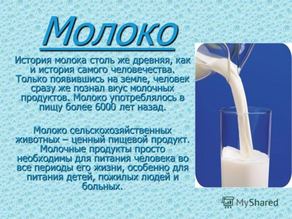 история появления молока