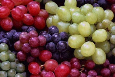 сорта чилийского винограда