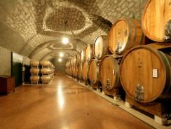 Выдержка вина в бочках и бутылочная