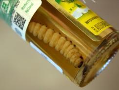 Мескаль –  с гусеницей мексиканский напиток