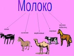 Ценность молока разных животных и его лечебное действие