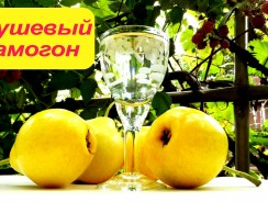 Рецепты грушевого самогона