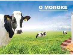Молоко состав, польза и мифы, за и против.