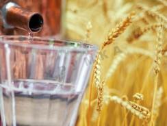 Рецепт самогона из пшеницы