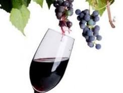 Домашнее сухое вино из винограда