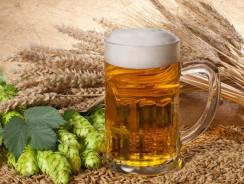 Рецепты приготовления домашнего пива