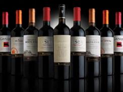 Красные сорта чилийских вин